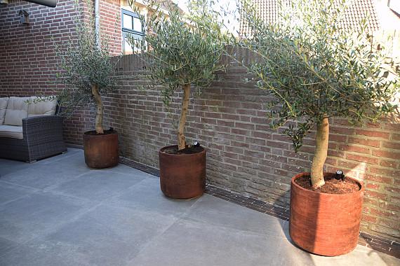 Strakke tuin met corten plantenbakken